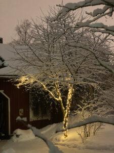 Punaisen talon edessä valaistu luminen puu