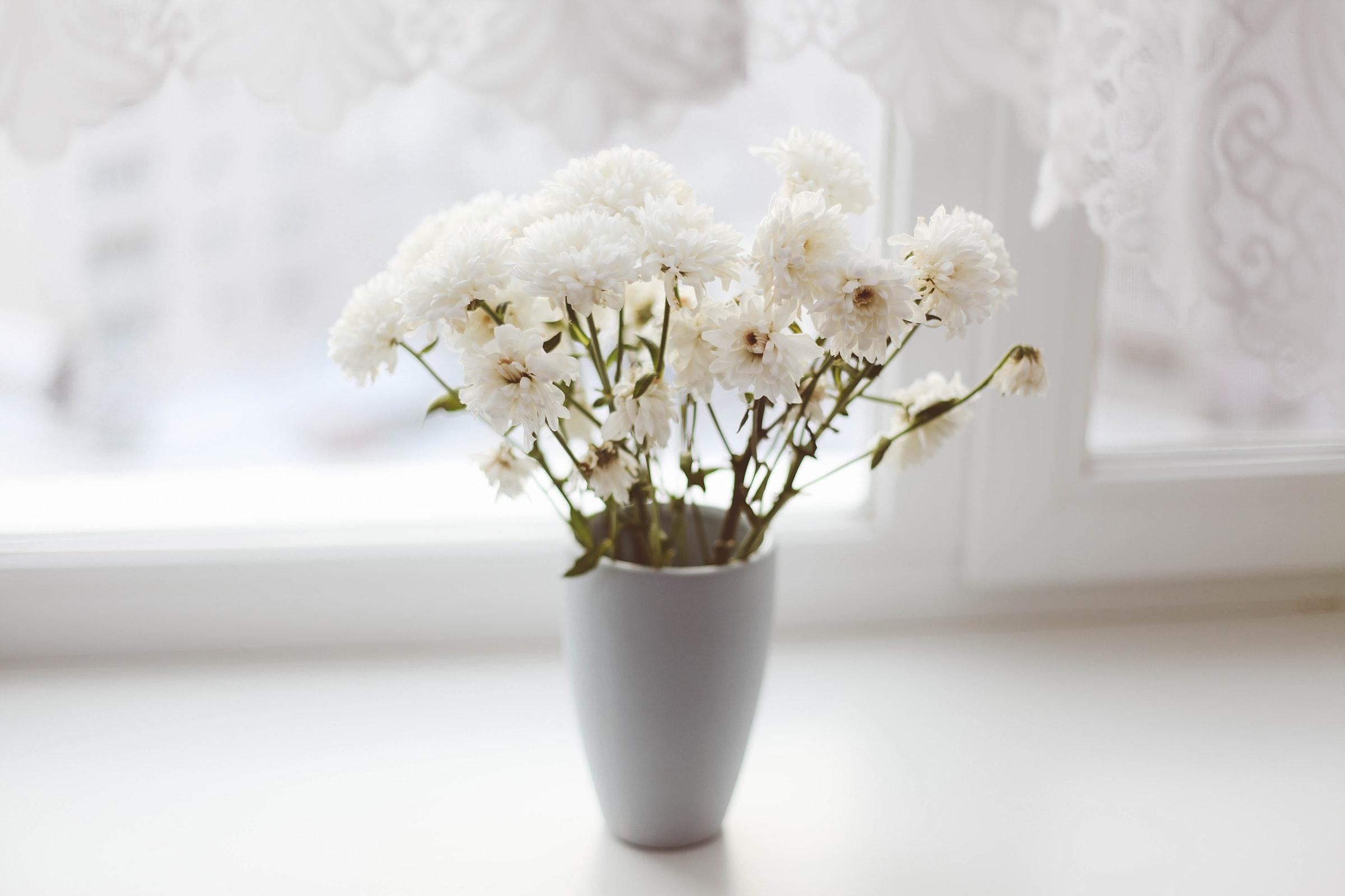 Valkoisia kukkia ikkunalaudalla